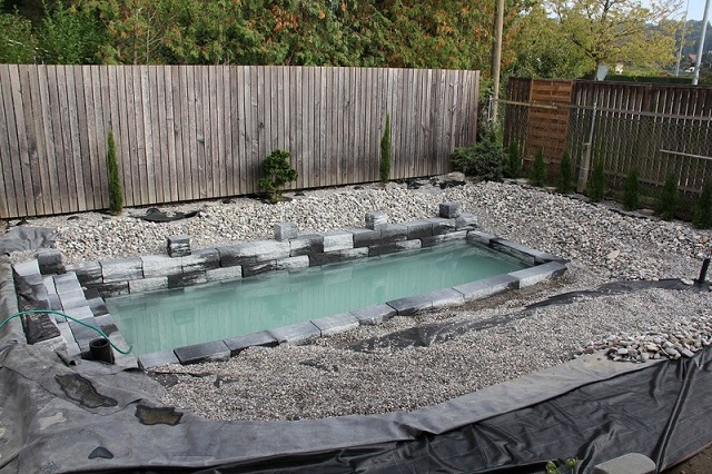 This swiss man and son build epic diy natural swimming pool Natural swimming pool builders