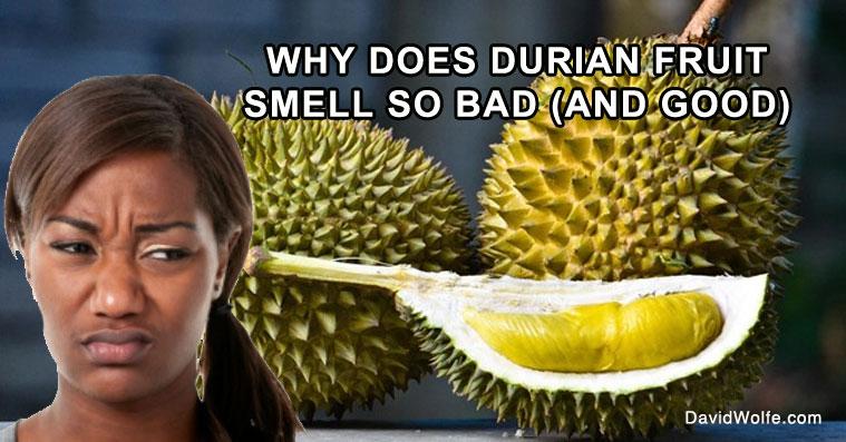 Durian Food Recipes