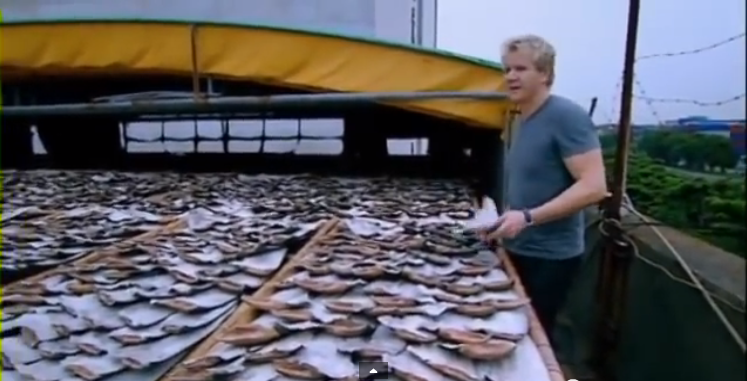 Gordon Ramsay Kitchen Nightmares France